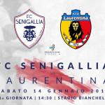 FC-SENIGALLIA-LAURENTINA