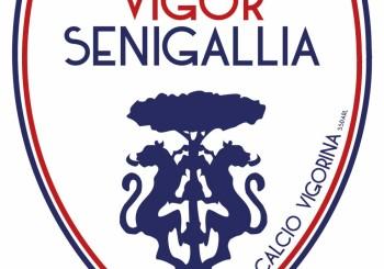 COMUNICATO – L'FC Vigor Senigallia si separa da Goldoni