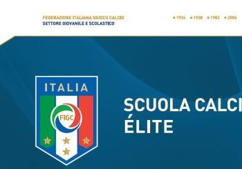 L'FC Vigor Senigallia è Scuola Calcio Élite