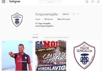 L'FC Vigor Senigallia sbarca su Instagram: follow us!
