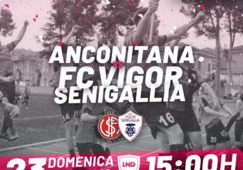 Domenica, tutti al Del Conero: c'è Anconitana-Vigor Senigallia (ore 15)