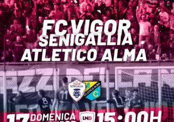 Domenica più che mai tutti al Bianchelli per Vigor Senigallia-Atletico Alma (ore 15,00)