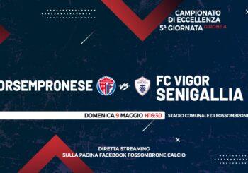 Nella tana della capolista: domenica c'è Forsempronese-Vigor (ore 16,30)