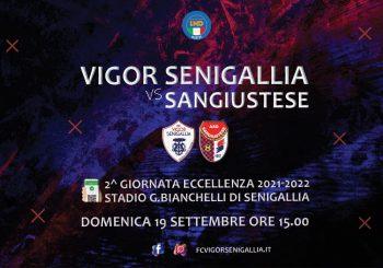 Bianchelli: siamo tornati! Domenica c'è Vigor Senigallia-Sangiustese (ore 15)